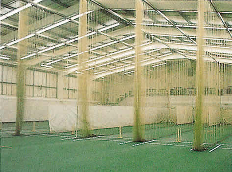 Indoor cricket netting installations huck for Indoor cricket net design